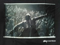 STUSSYJoshCheuseTシャツサイズSステューシー限定フォトfishbornバンドrock