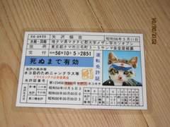 昭和56年当時物◆新品免許証◆暴走族ヤンキーつっぱり