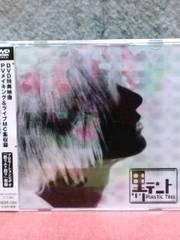 [送料無料] Plastic Tree(プラスティック・トゥリー)/黒テント
