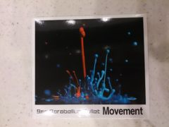 9 mm Parabellum Bullet「Movement」