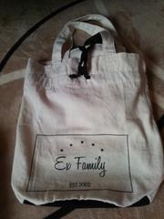 EX FAMILY 会員継続 ノベル