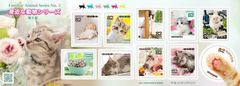 【未使用】身近な動物シリーズ【第5集】猫 820円分
