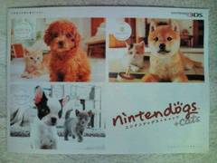 nintendogs+cats◆カタログ1冊 ニンテンドックス嵐 二宮和也