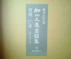 画集 加山又造素描集 裸婦20姿 定価58000円 額装用大版図版