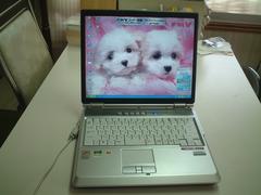 すぐ使える XP SP3 15型 DVDコンポ FMV-NB40M 100G