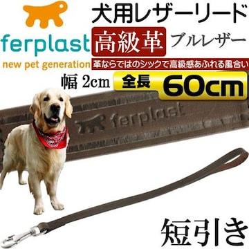 犬用短引き本格ブルレザーリードVIP 幅2cm長60cm Fa157