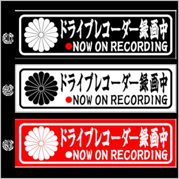 ドライブレコーダー録画中 菊紋 15センチ 2枚組