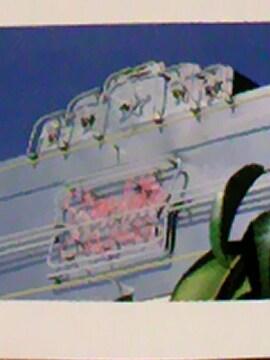 大橋純子 石川セリ 桃井かおり もんた&ブラザーズ…廃盤 86年盤