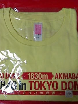 「AKB48 in TOKYO DOME 〜1830mの夢〜」Tシャツ チーム4・XL