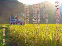 29年産 新米100% あきたこまち 玄米20キロ 精米無料