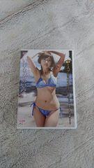いけながあいみ:DVD/ミスプレミア2015-2016遅咲きAmy満開Body