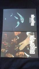 SMAP 1999 TOUR BIRDMAN コンサートツアーパンフレット ライブ