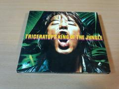 TRICERATOPS CD「KING OF THE JUNGLE」トライセラトップス●