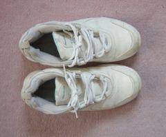 Reebok リーボック スニーカー シューズ 靴 23.5cm
