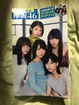 欅坂クリアーファイル