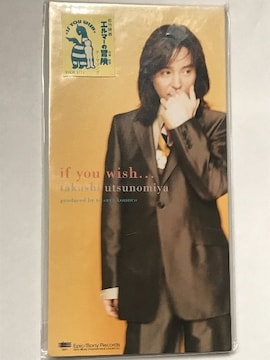 宇都宮隆(TM NETWORK) / if you wish...