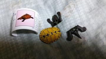 ニホンイシガメ★チョコエッグ日本の動物コレクション■Furuta