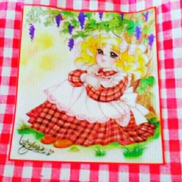 レア 新品 キャンディキャンディ ポーチ いがらしゆみこ 昭和