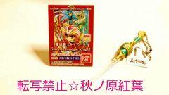CLAMPクランプ/魔法騎士レイアースSword of magic knight【風の剣】