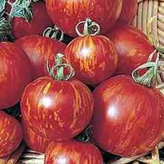 レッド ストライプ トマト  3粒