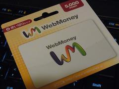 WebMoney ウェブマネー 5000円分 ☆モバペイ各種対応