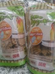 アラタ国産『小鳥のクッキー』ブロッコリー入りX�A袋(*^^*)