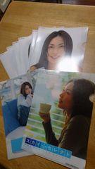 〈長谷川京子〉クリアファイル