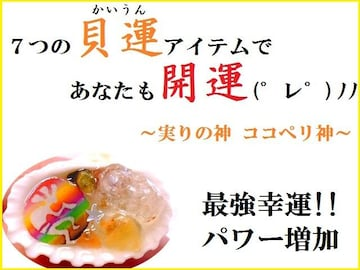 ココペリ貝運★最強幸運・パワー増加★迅速効果★パワーストーン/占