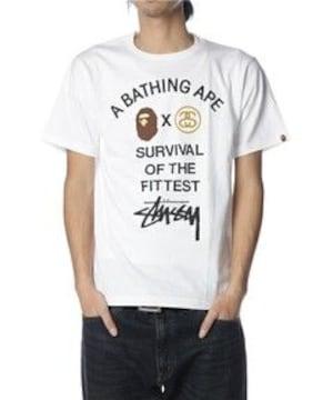 †APE×STUSSYコラボレーションTシャツ††