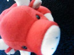 Tyビーニーぬいぐるみ赤い水牛?ブタ?豚ぶた