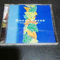 CD「上々颱風/グナース・グナース」沖縄音楽
