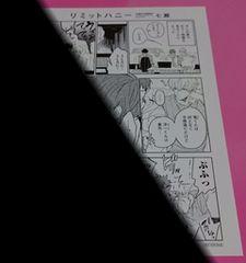 七瀬 リミットハニー 購入特典ペーパー