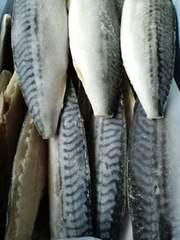☆大人気 ノルウェー産 塩サバフィーレ 10枚  冷凍