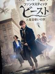 日本製正規版 映画-ファンタスティック・ビーストと魔法使いの旅