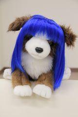 SALE【オリジナル】Wigs2you☆P-035☆犬☆猫☆ペットウィッグ