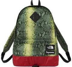 Supreme North Face Snakeskin DayPack 緑