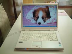 すぐ使える XP コンポ 無線 FMV-NF45T office/フォトショップ入