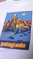 90S!パタゴニアフィッツロイ山TシャツオーガニックコットンPATAGONIA黒部ヨセミテ