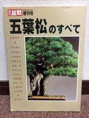 近代盆栽  増刊号  五葉松のすべて