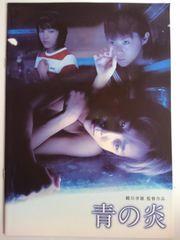 二宮和也 青の炎 パンフ 2003年