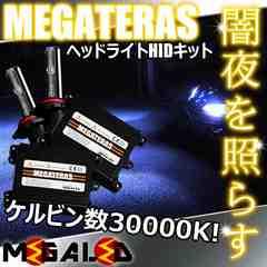 Mオク】オデッセイRA6/7系/ヘッドライトHIDキット/H1/30000K