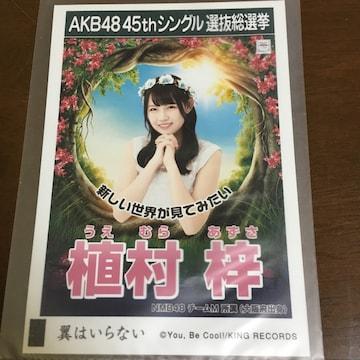 NMB48 植村梓 翼はいらない 生写真 AKB48