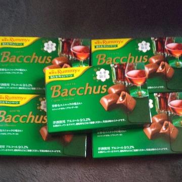 Bacchusチョコレート5箱