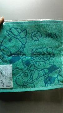 新品★非売品『JRA & キティコラボ』競馬ファン グリーン系